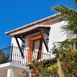 Hierbij opnieuw een kleine update over het leven in Quinta O Ninho, het was al even geleden.